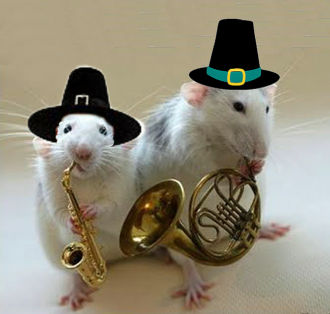 Pilgrim Mouse Band