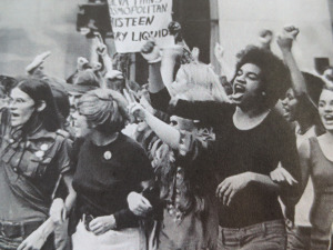 Women's movement (image by historyofsocialjustice blog)