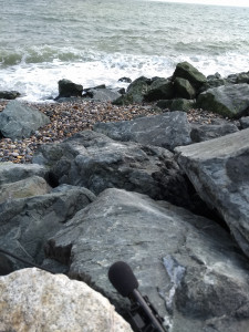 A microphone wedged in the rocks by the tide