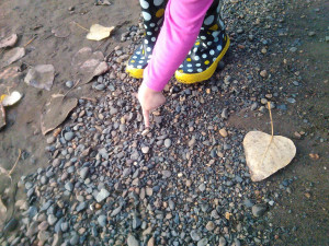 A pink sleeved child's arm and hand points out a piece of quartzite in the center of a gravel patch