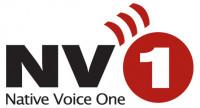 NV 1 logo